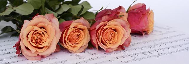 Klavier und Rosen